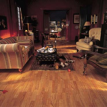 BerryAlloc Laminate Flooring | Ormond Beach, FL